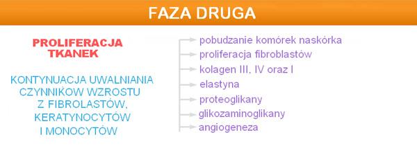 dermapen_faza_2