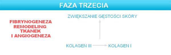 dermapen_faza_3